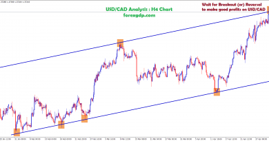 usdcad forex analysis